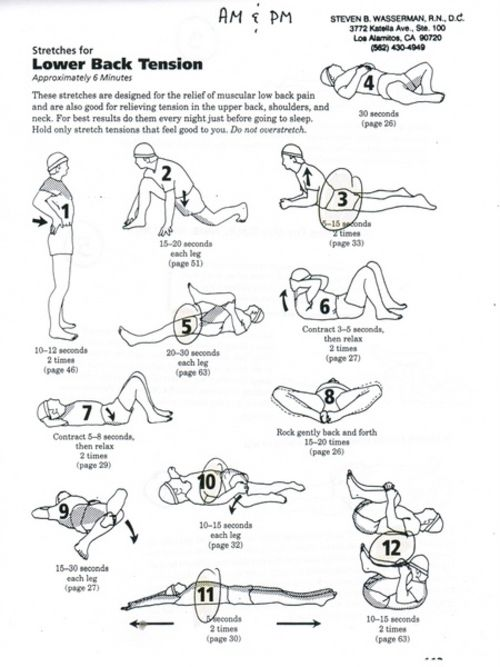 How to Stretch Your Lower Back fitness exercise health stretching stretch