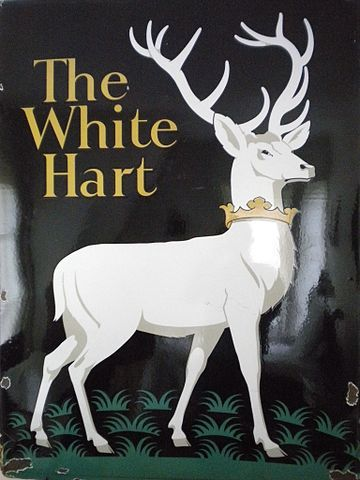 The white stag, like many other mythical creatures, wanders through the tangled forests and wild moorlands of our distant past.   Elusive and rare, our forefathers may have caught a glimpse in some…
