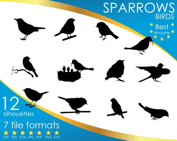 Hey, I found this really awesome Etsy listing at https://www.etsy.com/listing/501108120/12-silhouettes-birds-sparrow-bird-dxf