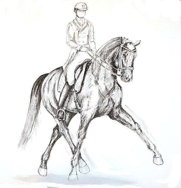 MZ - horse art: Dressage II