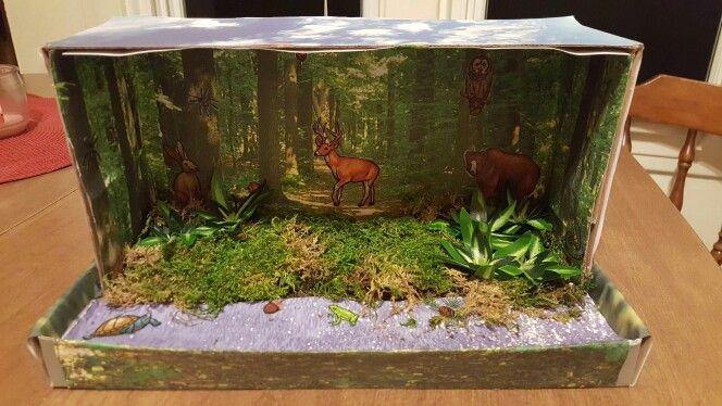 Deer habitat project