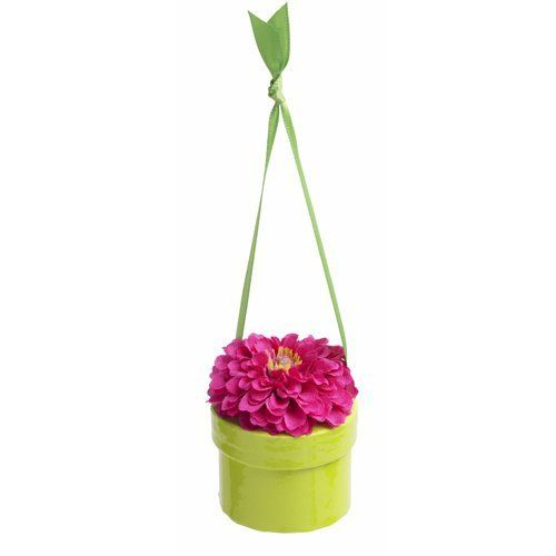 "Bloembox Hanging Minis: Standard Lilliput Zinnia in Gift Box by Bloembox. $12.99. A miniature gift box, peek inside for a big surprise. Zinnia elegans. - a 7'6"" biodegradable, plantable tissue paper seed ribbon. Gift presentation. that grows into the blossom on top of each box. 2 by 2.5 inches. BloemBox premium flower seeds are channeled between sheets of biodegradable tissue paper that can be cut-to-size and planted in an outdoor patio container, raised bed or prep..."