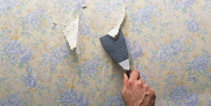 The Only Guide You Need For Removing Wallpaper - ELLEDecor.com