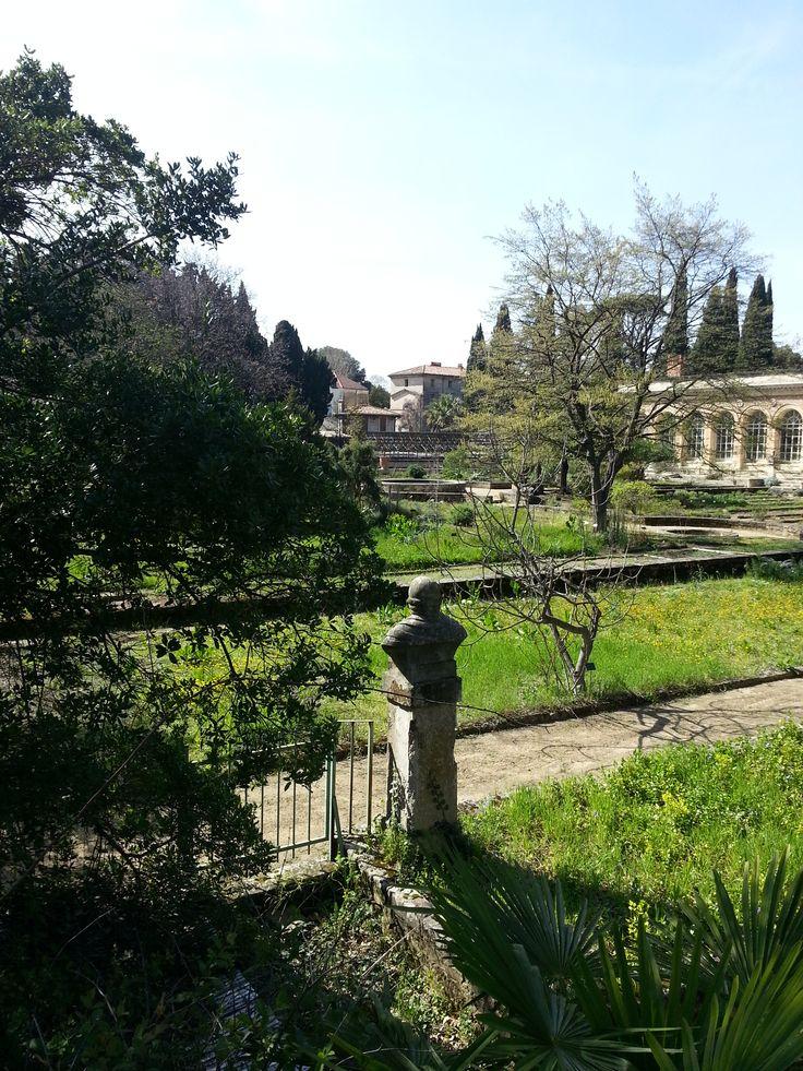 82 best le jardin des plantes de montpellier 1593 images - Le jardin des plantes montpellier ...
