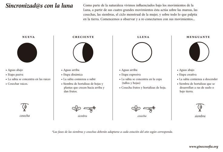 best Imagenes De Fases Lunares Para Colorear image collection