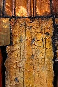 Carol Nelson - Work Detail: Tapestry 13005  This painting is a tapestry of mixed media materials combined to suggest a geologic landscape.  Included here you will find copper, pewter and aluminum metals, textured art papers, crackle paste and stucco mix. The painting comes with a black wood floater frame.