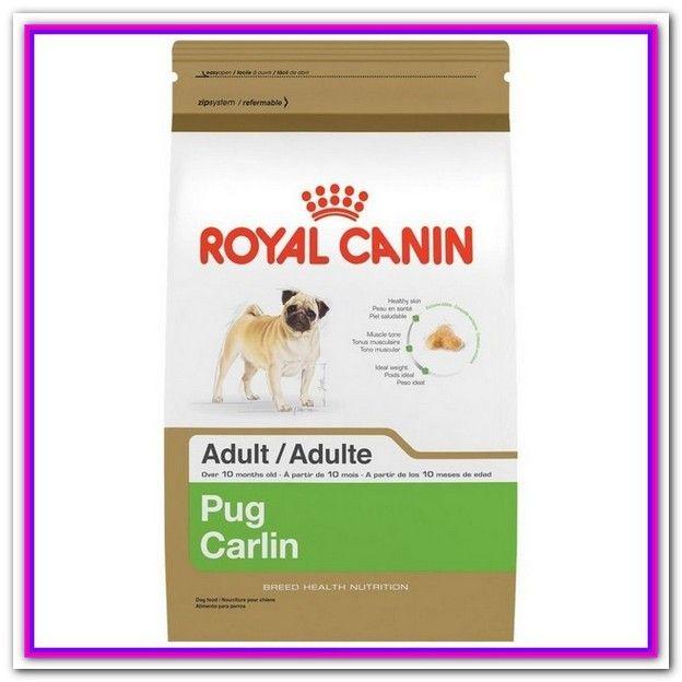 Best Dog Food For Pugs Uk Top Picks Best Food For Pugs Wellness Complete For Small Breeds Dogfood Bestdogfood Best Dry Dog Food Best Dog Food Dry Dog Food