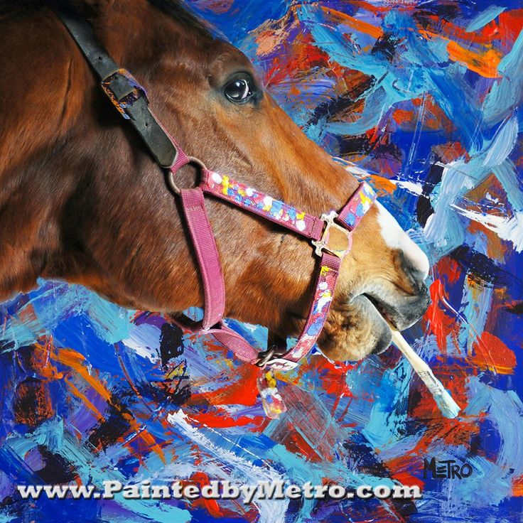 54 Best Meteorite Images On Pinterest: 34 Best Metro The Painting Race Horse! Images On Pinterest