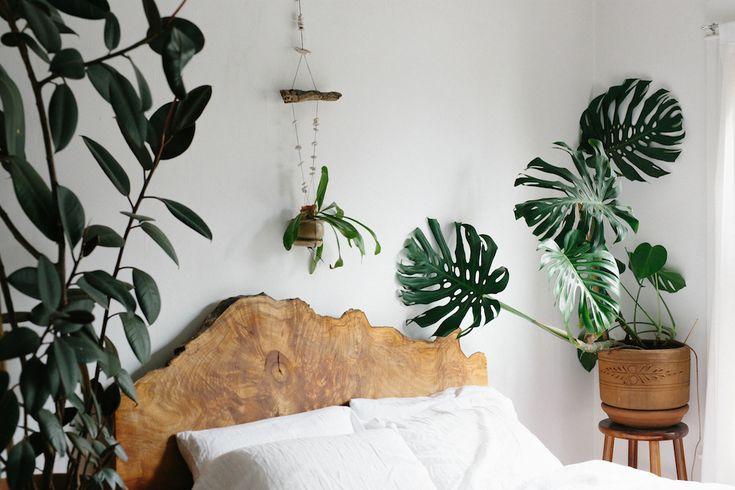 Monstera Delicious, King Size Kopfteil, Kopfteile, Grüne Schlafzimmer,  Master Schlafzimmer, Kleinen Raum Im Garten, Holz, Philodendron Monstera,  ...