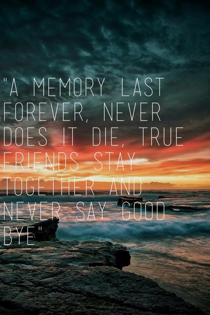 Friend ship quote