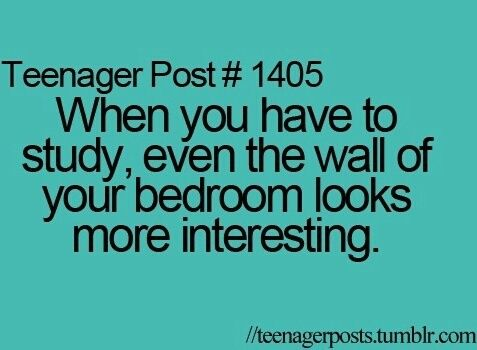 When you have to study, even the wall of your bedroom looks more interesting.