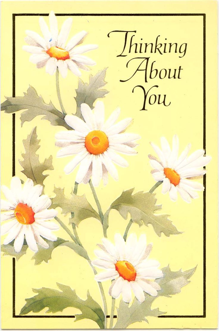 142 best miss you so much images on pinterest thoughts my boys thinking of you greeting card with white daisies kristyandbryce Image collections
