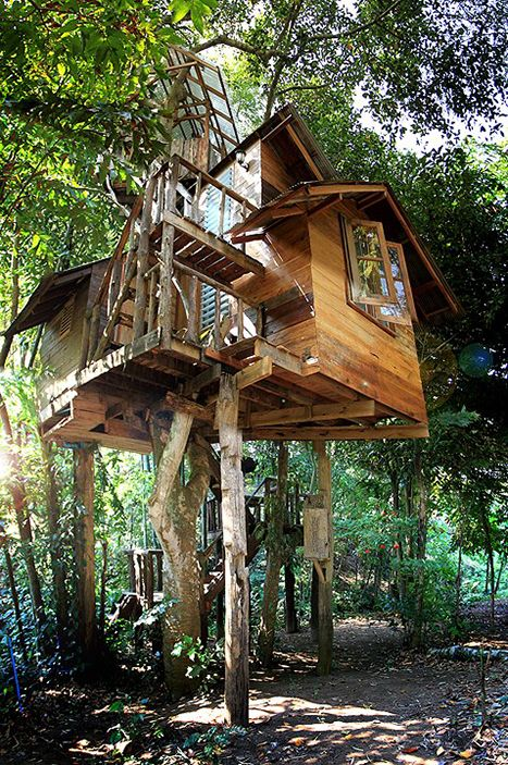 Jackfruit Treehouse. A cozy treehouse with a river view terrace, a rooftop terrace, and a rope swing. It is one of the treehouses at the Rabeang Pasak Chiangmai treehouse resort, whose owner is a retired architect. Located in Chiangmai, Thailand. [[MORE]]
