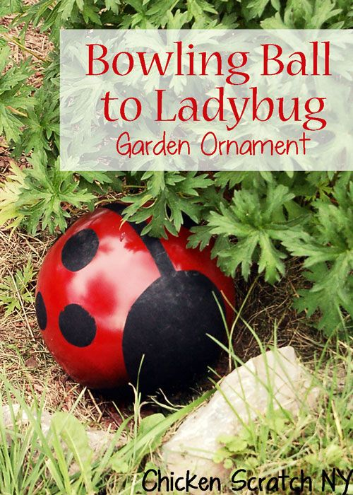 Bowling Ball --> Ladybug Garden Upcycle-  This is soo cute and something the kids could do too!!