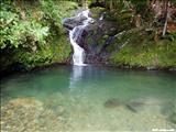 Toro Negro Forest - OROCOVIS, JAYUYA, JUANA DÍAZ - We could camp here! $4/night!!!!