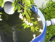 Voda nad zlato, aneb podzemní nádrže na dešťovku pro každou zahradu