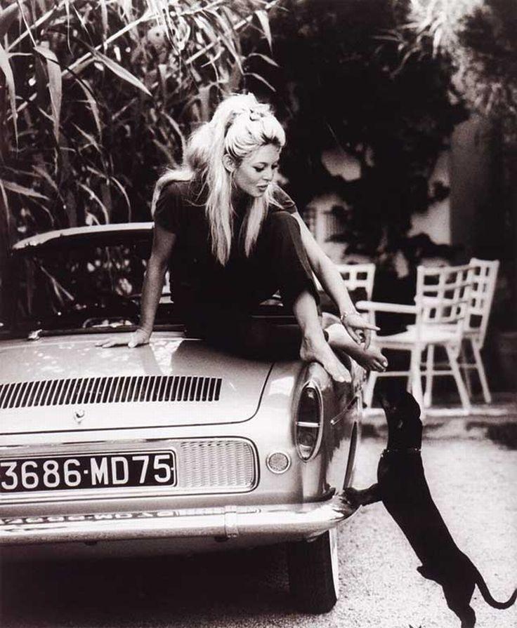 Brigitte Bardot: Inspiration, Dogs, Style, Vintage, Beautiful, Icons, People, Brigittebardot, Brigitte Bardot