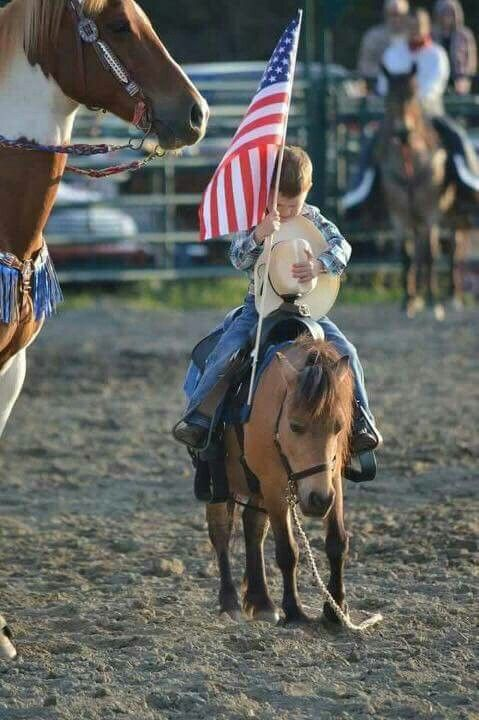 Image result for little cowboy pony flag rodeo