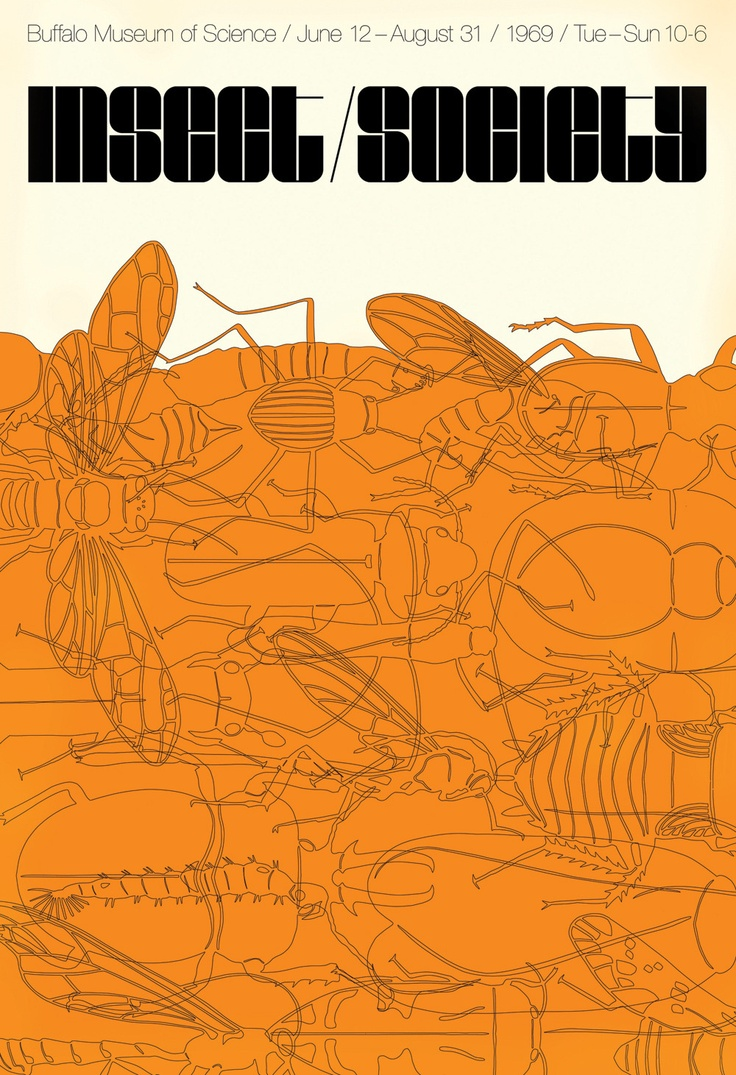 Graphic design poster 101 - Posters Insect Society Digital Pigment Print 40 X 27 Inches 101 X 68 Cm Part Of The Secondary Occupants Collected Observed Project