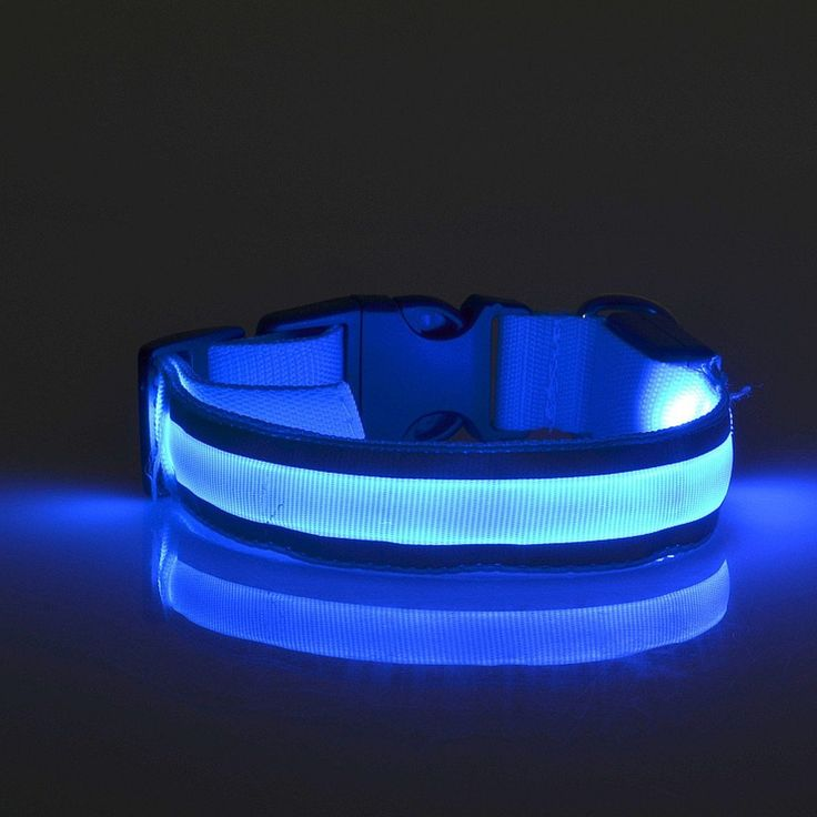 Namsan LED Reflective Dog Collar, Flashing cats LED Collar,Makes Your Dog Visible-M-Blue *** New and awesome cat product awaits you, Read it now  : Cat Collar, Harness and Leash