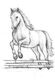 Risultato Immagini Per Disegni A Matita Cavalli Disegni Di