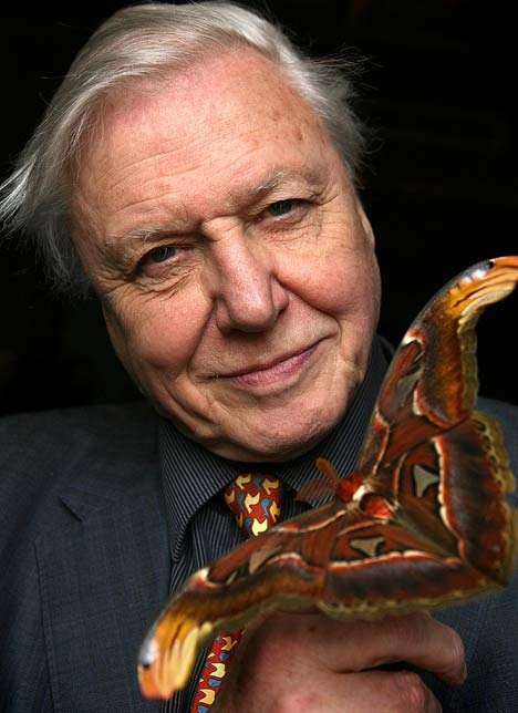 Naturalist and documentary filmmaker Sir David Attenborough. His documentaries have brought the world to me for decades, and I'm honored to live in a time where I can share is his works and be inspired by his dedication and obvious love of discovery.