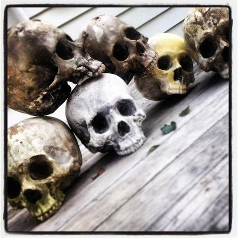 Fresh batch of skulls... FOR SALE! chazorrtattoo@gmail.com for orders or tattoo enquiries