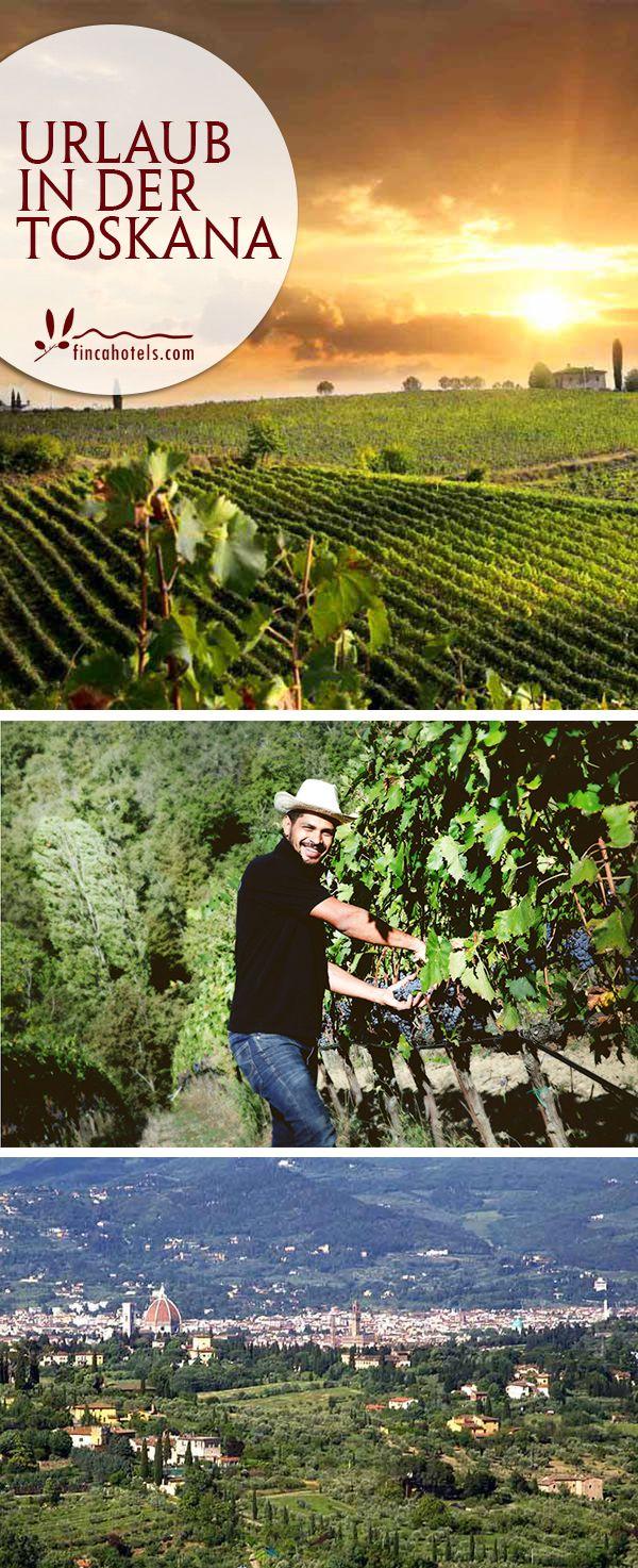 Urlaub in der Toskana. Die weitläufige wunderschöne Natur, die überwiegend aus sanften, grünen Hügeln, unendlichen Weinbergen und den typisch, markanten Zypressen besteht, inspirierte schon viele Maler und Poeten. Gleichwohl hat die Toskana auch zahlreiche kulturelle Schätze, zauberhafte, geschichtsträchtige Städte aber auch schöne Strände und eine authentische Küche zu bieten. Tipps für den Urlaub in der Toskana findet ihr hier.