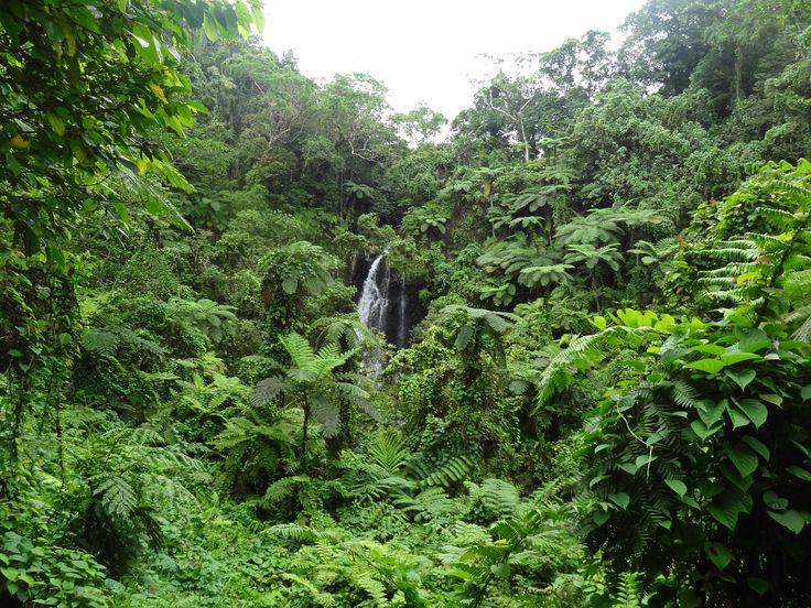 Bouma Waterfall