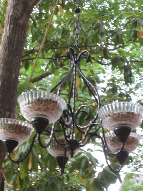Chandelier bird feeder @ Peachy Doodles and Polkadots: Crafts (I love this idea - will be on the hunt for a cheap-o chandy so I can create this for our birdies)