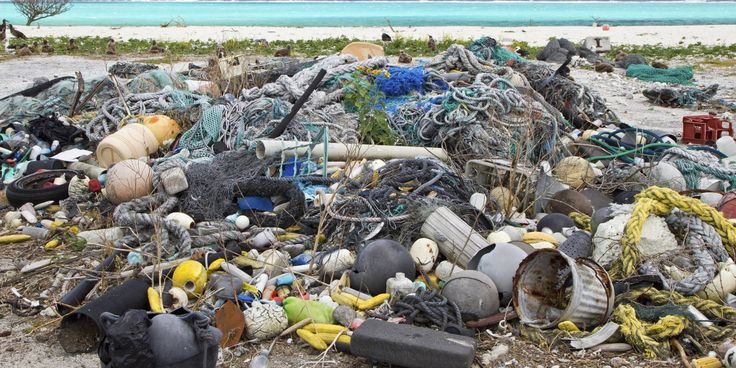 The oceans will contain more plastic than fish by 2050 midway the oceans will contain more plastic than fish by 2050 midway atoll and plastic pollution sciox Image collections