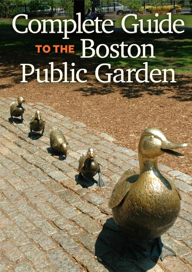 Everything you need to know about the Boston Public Garden. One of our favorite outdoor things to do in Boston.