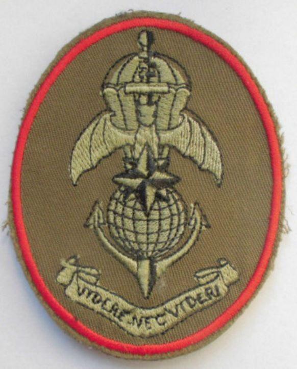 Toppa O Patch Paracadutisti Acquisitore Obiettivi - Mod. Comandante Di Compagnia