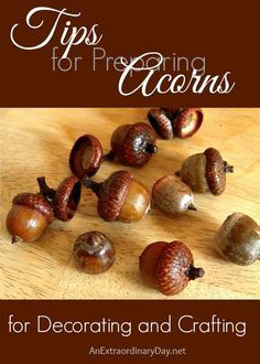 I love acorns, but have not used them before. After a little research and experience, I'm sharing my tips for preparing acorns for decorating and crafting.