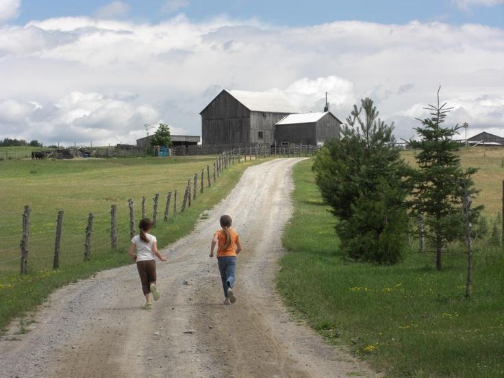 Walk or run...to Free Spirit Stables