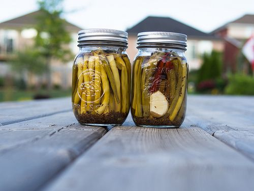 Canning Beans: Pickled Dilly Bean Recipe - WellPreserved.ca