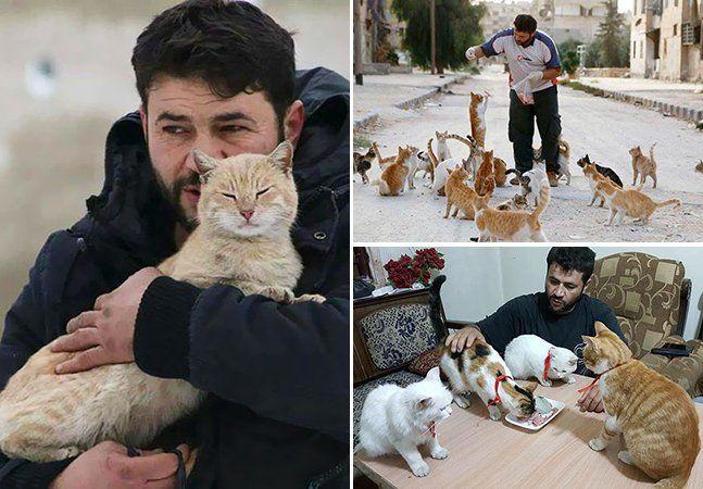 """Poucas pessoas têm um coração tão grande como o de Mohammad Alaa Aljaleel, também conhecido como """"O homem dos gatos de Aleppo"""". Apesar de toda a tragédia que vive sua cidade, devastada pela guerra, ele não arredou o pé de sua casa para poder cuidar de mais de 100 gatos abandonados. Nos últimos 4 anos, mais de 40 mil moradores foram embora de Aleppo, deixando tudo para trás, inclusive os gatos que Mohammad toma conta. Antes da guerra, ele levava uma vida normal, trabalhando como eletricista…"""