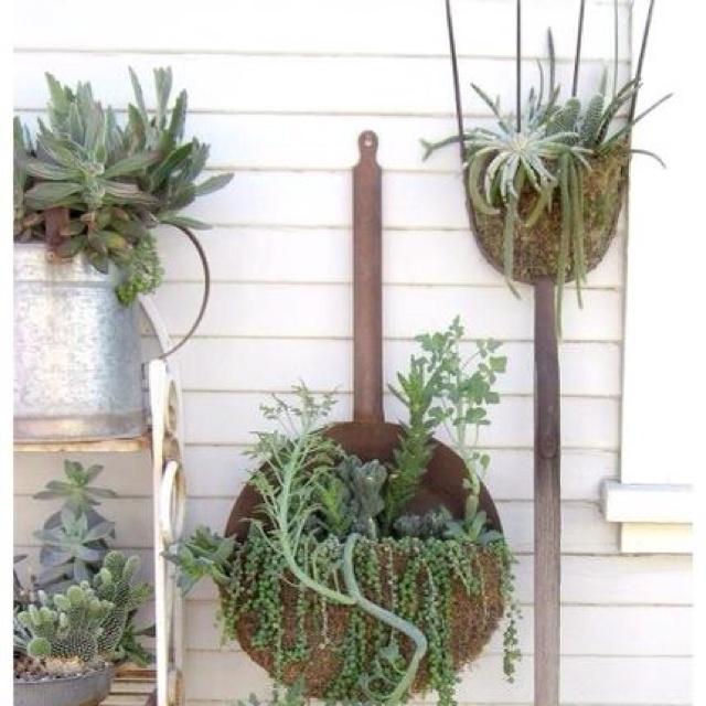 DIY: A Creative Wall Of Succulents, Using Vintage Garden Tools.