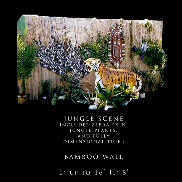 1000 Images About Jungle Luxe On Pinterest: 1000+ Images About VBS On Pinterest