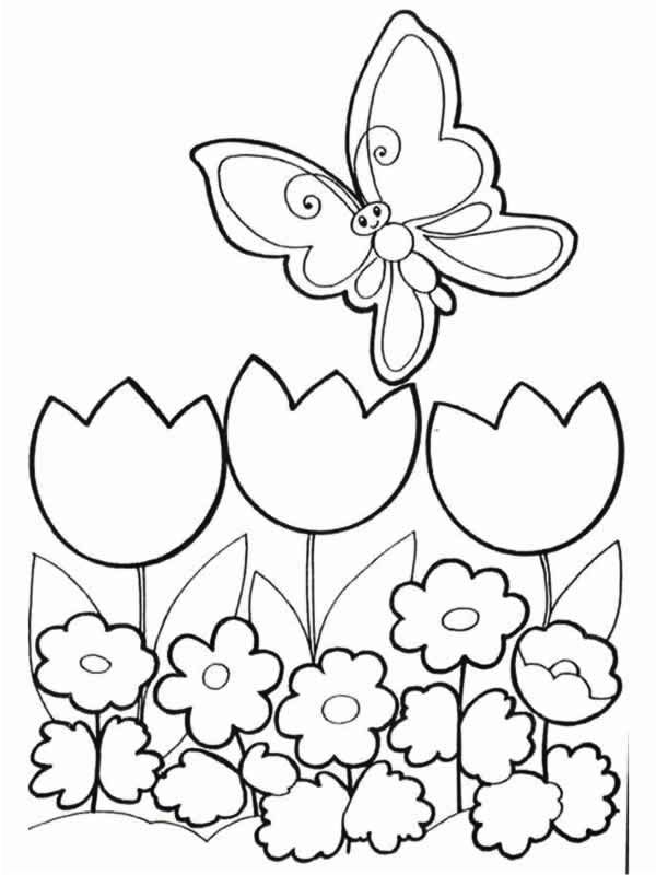 fiori-con-farfalle-2.gif (600×800)