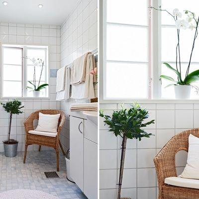 Decorar el baño con plantas es una muy buena idea #plantas #baño #ideashabitissimo