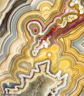 Crazy Lace Agate (Bill Atkinson photography)