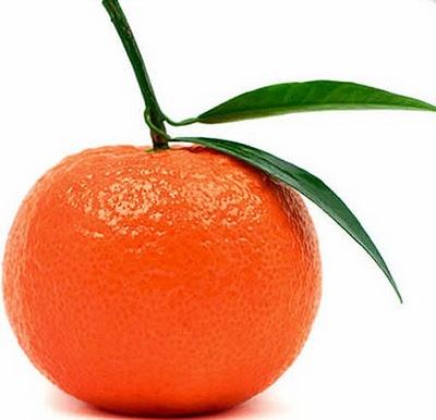 tangerine mandarin dr mmeland pinterest