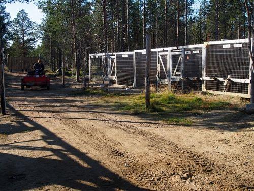 Our Farm and Cabins | Hetta Huskies - Dog Sledding Finland | Mushing Finland | Husky Safari Lapland Scandinavia