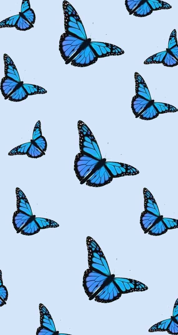 Aesthetic Tumblr Blue Butterfly Wallpaper Iphone ...