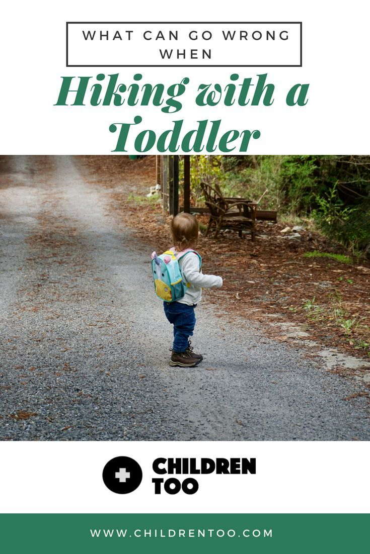 Hiking with a Toddler- What Can Go Wrong and How to Prepare  720638365fdc