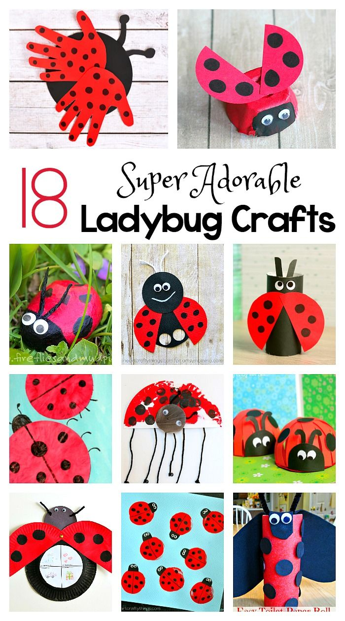 toilet paper roll ladybug craft 17 best ideas about ladybug crafts on bug 7259