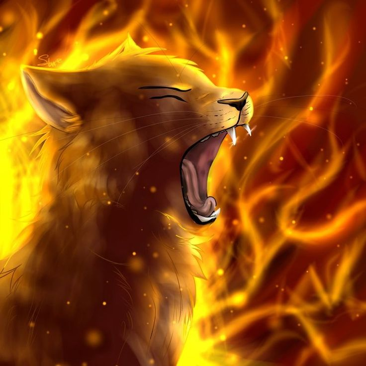 Warriors Into The Wild Ending: 42 Best Firestar Images On Pinterest