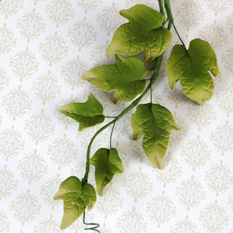 Sugarpaste vines, leaves and foliage from Caljavaonline.com