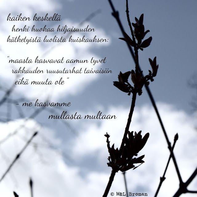 #runo #runokuva #runous #runoilija #elämä #kuolema #valokuva #valokuvaus #suomeksi